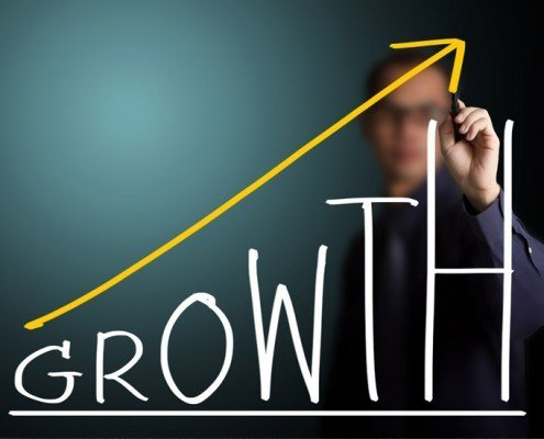 Growth is Not a Strategy